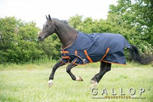 Gallop Trojan 100g Chemise de pluie avec col Standard EU 160cm
