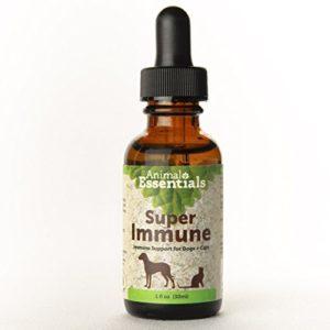 Animal Essential – Flacon Super Immune défense immunitaire pour chien/chat 30 ml