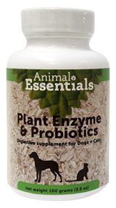 Animal Essentials PLANT ENZYMES & PROBIOTICS (Digestion) Dog & Cat 100 Gram