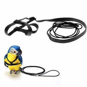 ASOCEA Harnais réglable pour Perroquet et Oiseau avec Corde Anti-Morsure pour entraînement en Plein air pour Animal Domestique