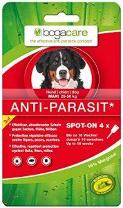 Bogacare Anti-Parasit Hund groß 4×2,5ml