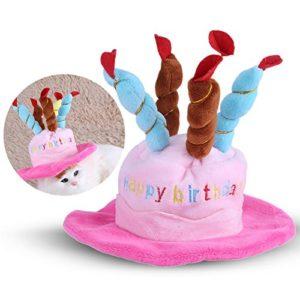 Bonnet Pour Chat, Cadeau Chat Chapeau Chat Chiend'anniversaire Bougies Pour Gâteau D'anniversaire Chapeau Pour Chats Chiens Petits Animaux