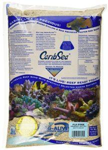 Caribsea Arag-alive Fidji Aquarium Sable, 4,5kilogram, Rose