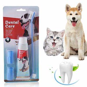 Dentifrice pour chien,Soins dentaires pour chiens, Trousse de soins dentaires, Additif anti-tartre pour soulager la mauvaise haleine des chiens, Nettoyage naturel et efficace des dents et des gencives