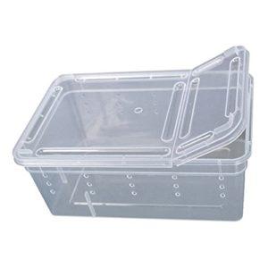 dljztrade Boîte d'alimentation en Plastique Transparent pour Reptiles Amphibiens Insectes Réptiles Boîte de Transport