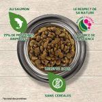 EUKANUBA GRAIN FREE Croquettes Sans Céréales Chien Adulte Toutes Races Au saumon frais – Recette low allergène 100% nature complète et équilibrée- SANS OGM, arôme artificiel, colorant–sac de 10kg