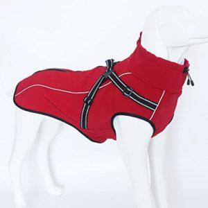 GWELL Manteau Imperméable Polaire pour Chien Manteau d'hiver Automne Printemps avec Anneau en Forme de D Rouge S