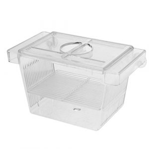 HomeDecTime Boîte D'isolation De L'incubateur Boîte De Reproduction en Poisson