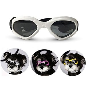 Homesupplier Dog Goggles Doggie Sunglasses for Small Medium Dogs Glasses Puppy Eyewear Windproof UV Protection, Vet Recommended Eye Protection (White)