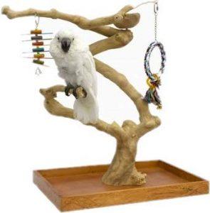 Java Mini Tree Parc de Jeux pour Oiseaux