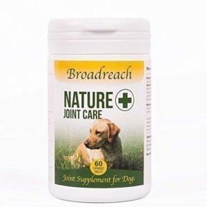 Joint supplément pour chiens 60 comprimés avancé Vétérinaire Formule 5 40+ kgs Ingrédients Tous Naturels avec Glucosamine Chondroïtine et Curcuma fabriqués au Royaume Uni Maintenant arrière