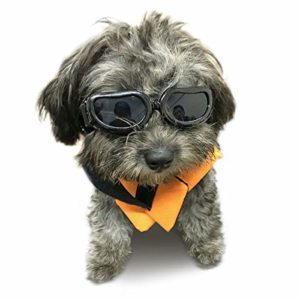 Kailian Lunettes de soleil étanche et anti-UV pour petits chiens
