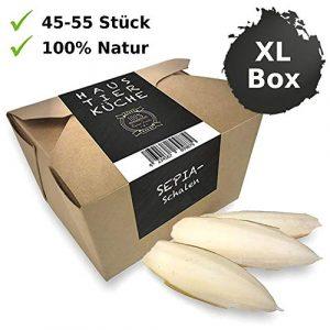 Küche® | Sepia XL Box – Lot de 8 à 12 cm Taille – Calcium, Nourriture, Nourriture pour Reptiles – Accessoires pour Tortues – Sepia Bol pour nom de Bartagame