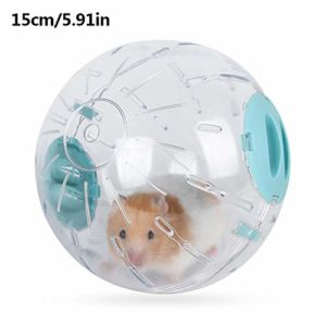 Letway Jouet Boule Hamster – Boule d'exercice Hamster, Sports Fitness Running Ball Glowing Cool Pet Toy Nearby