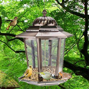 Mangeoire D'oiseau Sauvage Accrochant Extérieur De Gazebo d'animal Familier, Parfait pour La Décoration De Jardin Et L'observation D'oiseau pour L'amant D'oiseau Et Les Enfants
