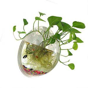 NGwenyicanI Pot à Poisson en Acrylique Transparent à Suspendre au Mur pour Aquarium Aquaponique Aquarium Plante Poisson Bulle