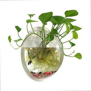 NNuodekeU Aquarium aquaponique en Acrylique Transparent à Suspendre 0,5 Gallon