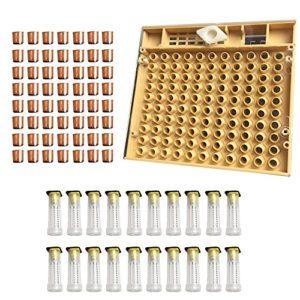 Outils d'apiculture équipement Set Queen système d'élevage de la boîte de culture + 110pcs plastique Bee Cell tasses + Queen cage