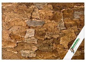 Paroi arrière XL pour terrarium Desert – 3D – en écorce de liège naturel style désert – 90 x 60 cm