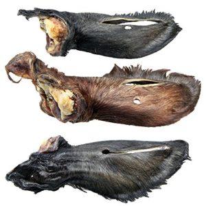 Schecker Échantillon en Fourrure – De la région – Magnifiques Oreilles de Calibre en Tant Que nettoyant intestinal.