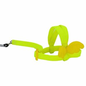 tidystore Harnais Et Laisse pour Perroquets Harnais Et Laisse pour Oiseau Perroquet en Sangle Outdoor Training Traction Rope for Budgerigar Lovebird Cockatiel Mynah Small Birds