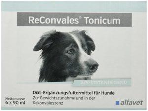 alfavet ReConvales Tonicum Complément alimentaire pour chien