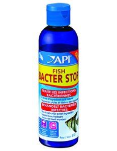 Api Hygiène et Santé des Poissons pour Aquariophilie Fish Bacter Stop 118 Ml