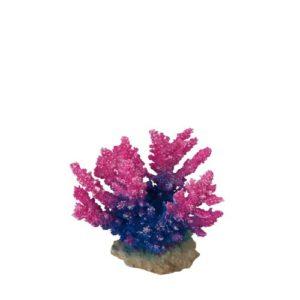Aqua Della Acropora Corail-Module pour Aquariophilie Pourpre 15 x 7 x 13 cm