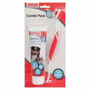 BEAPHAR – COMBI-PACK : Brosse à dents + Dentifrice haleine fraîche pour chien et chat (tube de 100 g) – Élimine la plaque dentaire – Empêche la formation de tartre – Combat la mauvaise haleine