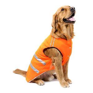 Bwiv Gilets de sécurité pour chiens Chat Manteau Protecteur de ventre Bande réfléchissante Épaississant en tissu avec un trou de laisse Orange 4XL (longueur du dos 60cm, poitrine 70-80cm)