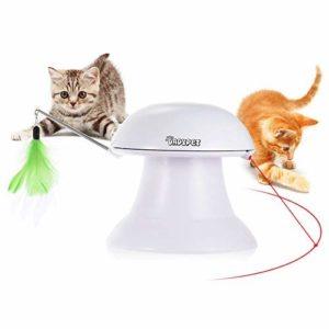 DADYPET Jouet pour Chat, Jouet Electronique Automatique, Jouet Chats Interactif 2 en 1 avec Plume et Point de Lumière Rouge – Rechargeable par USB (Câble Inclus)