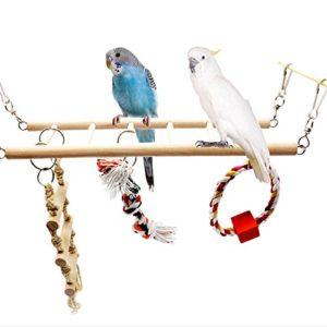 Dairyshop pour animal domestique Oiseau Perroquet perruche calopsitte élégante Échelle Hamac balançoire à mâcher Jouets en bois à suspendre