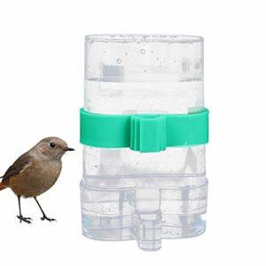 Ddgyl88 Mangeoire à oiseaux pour perroquet à usage intérieur extérieur étanche à double usage durable Fontaine à usage domestique jardin automatique Fournitures de cage Transparent