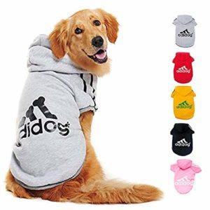 Ducomi Adidog – Sweatshirt pour Chiens avec Capuche en Coton Doux – Tailles Disponibles du XS au 8XL et Large Choix de Couleurs – Expédié Depuis France (L, Gris)