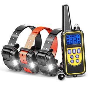 Feisui Collier de Dressage pour Chiens avec 4 Modes de Vibrations, Bip Et Lumière étanche et Rechargeable Collier télécommande 800M pour 3 Chiens