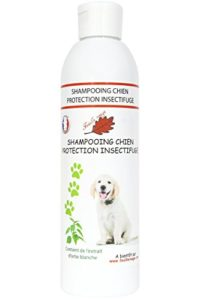 Feuille rouge – Shampooing pour Chien – protection Insectifuge – 250 ml
