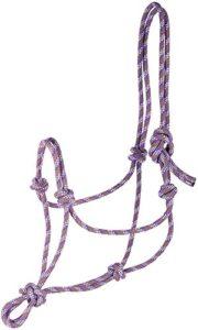 Harry's Horse 31000701–05COB nœuds Licol–COB, M, Violet