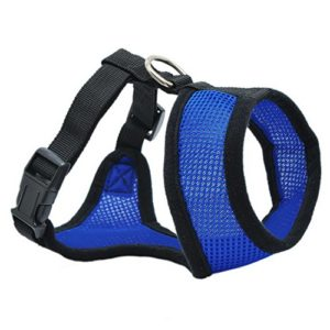 Hoomall Pet Strap Harnais Leash Chien Animal de Compagnie Réglable pour Couse Jogging Promenage