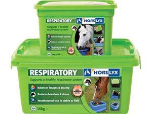 Horslyx 5kg stable/Field Lick–Toutes les saveurs rapide envoi