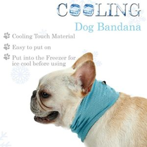 huichang Dog Cooling Collar Chill Out Ice Bandana, Summer Chill Pet Collar Fit Small and Medium Dogs