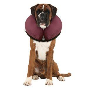 iCollr Collier Gonflable De Rétablissement d'Animal Familier – Collier Protecteur Pour Les Chiens et Chats en récupération post-opératoire