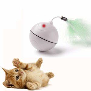 Jouets de Chat Chargé par USB Balle à Rouler Automatique avec Point de Lumière Rouge Jouet d'Exercice Interactif de Divertissement avec la Plume Détachable pour des Chatons – BATTERIE RECHARGEABLE