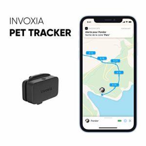 Pet Tracker – Traceur GPS pour chats et chiens – Abonnement inclus – Plusieurs mois d'autonomie – léger et petit