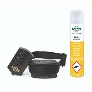 PetSafe – Collier de Dressage à Spray avec Télécommande pour Chien – Léger et Imperméable – Portée de 85 mètres