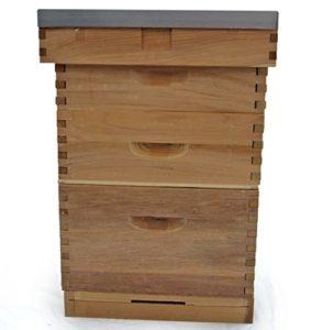 Ruche 'Langstroth' en bois de Cèdre, avec un toit plat.