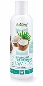 AniForte Shampooing pour chiens avec extrait de noix de coco et aloe vera 200ml – shampooing soin naturel pour cheveux longs et courts chez le chien
