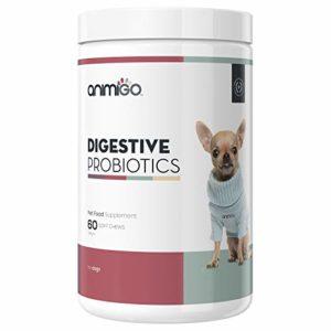 Animigo Probiotiques Digestifs pour Chiens 60 Capsules Supplément Naturel pour la Digestion