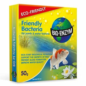 bactéries Bénéfiques