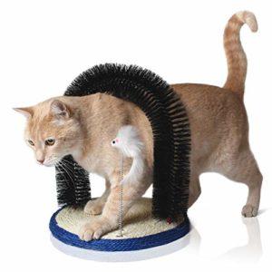 Bella & Balu Arche pour chat avec jouet pour chat et herbe à chats – Arche de massage pour chat avec brosse grattante et planche à griffer en sisal pour masser, toiletter et jouer
