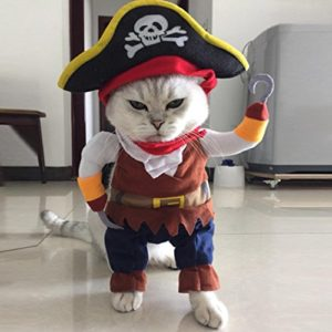 Bonjouree Costumes Halloween Chien Chat Petit Vêtements Cosplay Pirate (M)